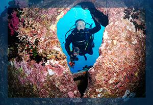 Adventure Diver Wreck
